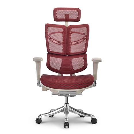 龙康人体工学椅 HFYM01-G